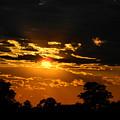 Dark Sun by Mark Blauhoefer