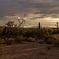 Dark Sunset by Ryan Seek
