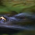 Dark Waters by Mike  Dawson