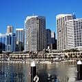 Darling Harbour Sydney Australia by Kaye Menner