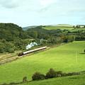 Dart Valley Steam  by Rob Hawkins