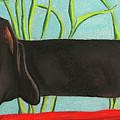 Dash Hound by Michelle Hayden-Marsan