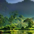 Dave Ruberto - Wonderful Lake Green Nature Landscape  by Dave Ruberto