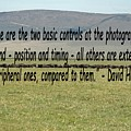 David Hurn Quote by Tony Murtagh