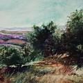 Davis Mountain by Marlene Gremillion
