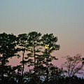 Dawn And Moon Setting - Virginia by Mother Nature