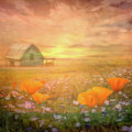 Dawn Blessings On The Farm by Debra and Dave Vanderlaan