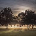 Dawn by Chris Fletcher
