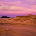 Dawn Dunes by Robert Potts