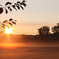 Dawn Of A Brand New Day  by Cathy  Beharriell