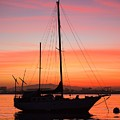 Dawn Of The Sailboat by Caroline Jeanine