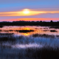 Dawn Over The Salt Marsh by Rich Leighton