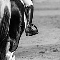 Day At The Dressage by Vanora Naude