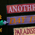 Day In Paradise by Char Szabo-Perricelli