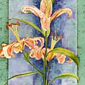 Day Lily by John Dyess
