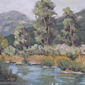Day On The Yampa by Barrett Edwards