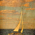 Day Sail by Michael Petrizzo