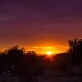 Daybreak by Amy Sorvillo