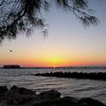 Daybreak, Anna Maria Island City Pier #30091 by John Bald