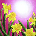 Daybreak Daffodils by Laura Iverson