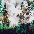 Daydreamer  by Christina  Kirkpatrick