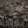 Daydreams Darken Into Nightmares by Evelina Kremsdorf