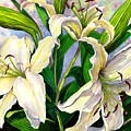 Daylilies 2 by Catherine G McElroy