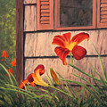 Daylilies At The Shed by Elaine Farmer