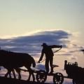 Day's End Amish Farmer Barnhill by Blair Seitz