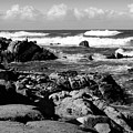 Dazzling Monterey Bay B And W by Joyce Dickens
