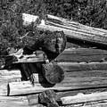 Ddp Djd B And W 1880s Log Cabin Ruins Montana 2 by David Drew