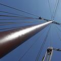 de Mast by Johan Van der knokke