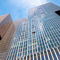 De Rotterdam Vertical City by Philip Preston
