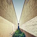 Dead End Alley by Scott Norris