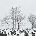 Dead Of Winter by Philip LeVee