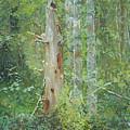 Dead Tree by Simon Kozhin