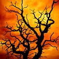 Dead Tree by Meirion Matthias