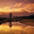 Deadwood River Sunrise by Leland D Howard