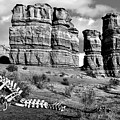 Death On Notom-bullfrog Road - Capitol Reef - Bw by Nikolyn McDonald