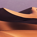 Death Valley Dunes by Matt  Trimble