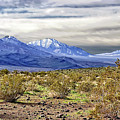 Death Valley Mountains by Endre Balogh