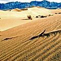 Death Valley National Park by Jerome Stumphauzer