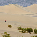 Death Valley Sand Dunes by Andre Distel