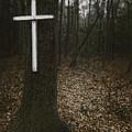 Death Was Here by Margie Hurwich