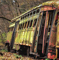 Decaying Trolley Cars by Ken Curtis