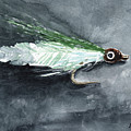 Deceiver Fishing Fly by Sean Seal