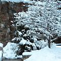 December Snows by Doug Mills