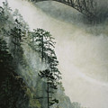 Deception Pass Fog by Perry Woodfin