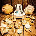 Deckchairs And Seashells by Jorgo Photography - Wall Art Gallery