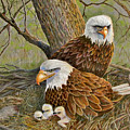 Decorah Eagle Family by Marilyn Smith